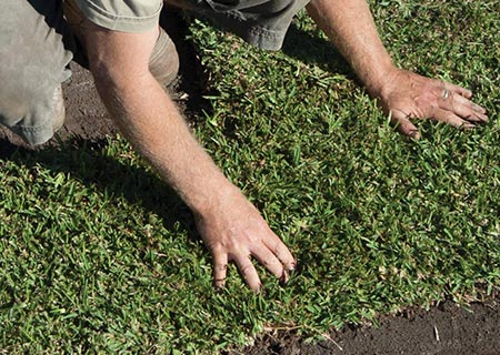 Turf installation: What you need to know