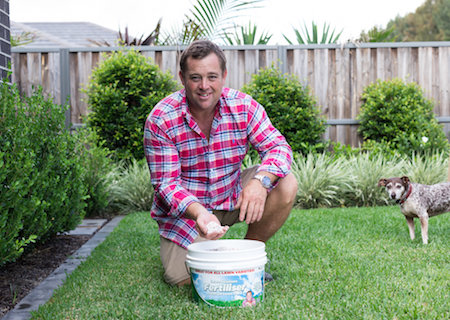 How to Revive Lawn Grass!