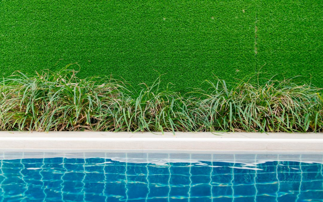 Will Pool Water Kill Your Lawn