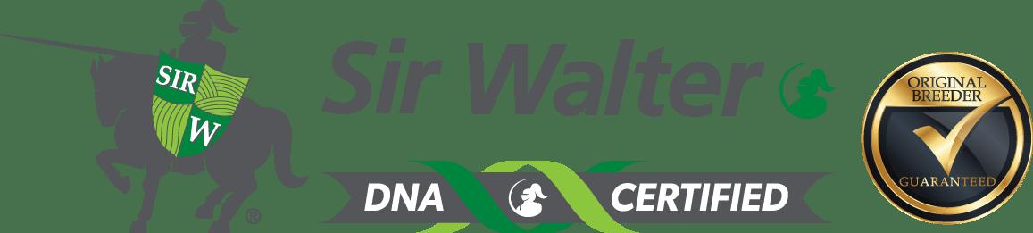 Sir Walter DNA Certified Sydney Lawn Supplier