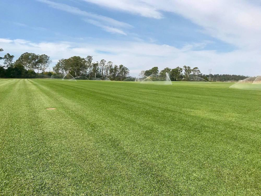 Turf Suppliers Sydney