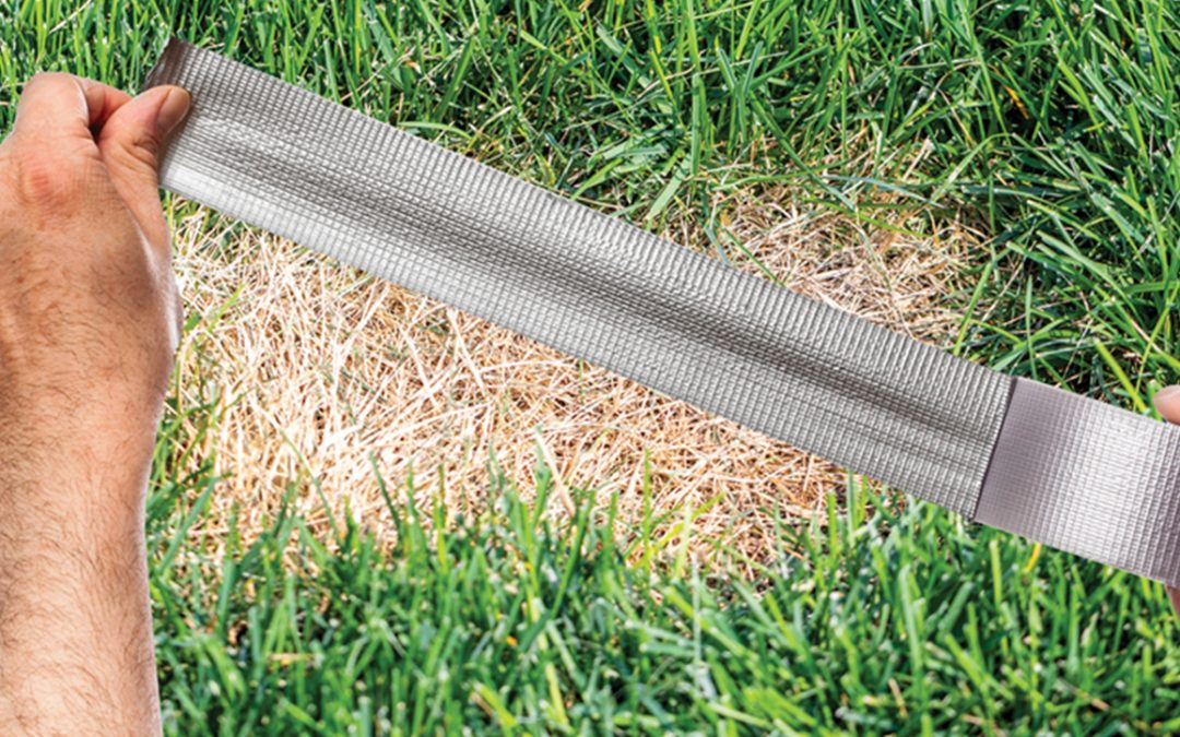 How To Fix Dry Patches In Your Lawn