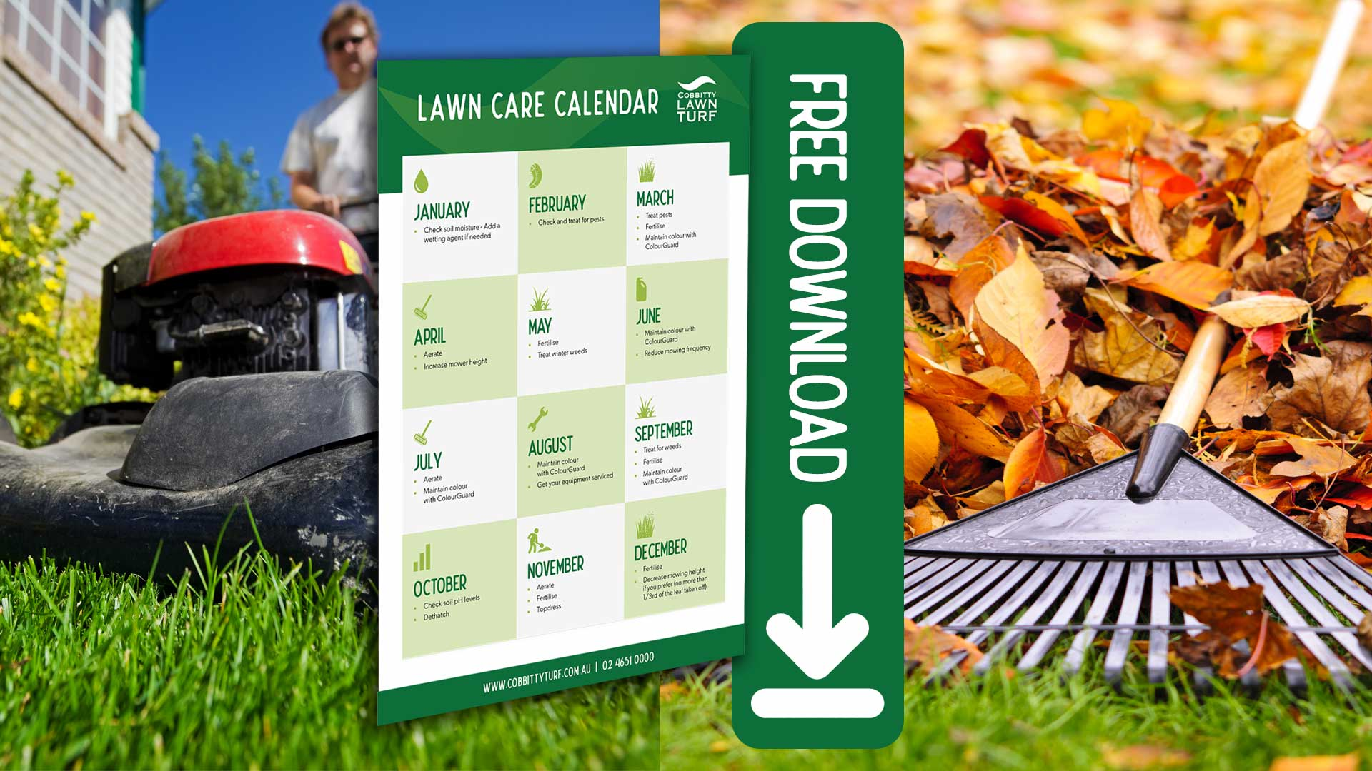 Lawn Care Calendar Download